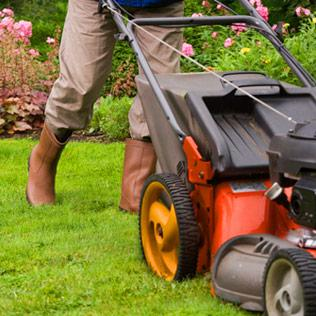 Fairport Ny Lawn Care Services Tree Services Brockman