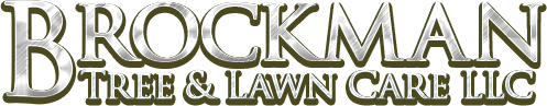 Brockman Tree & Lawn Care
