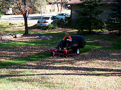 Spring Fall Clean Ups
